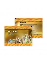 At Kuyruğu Horsetail Toz